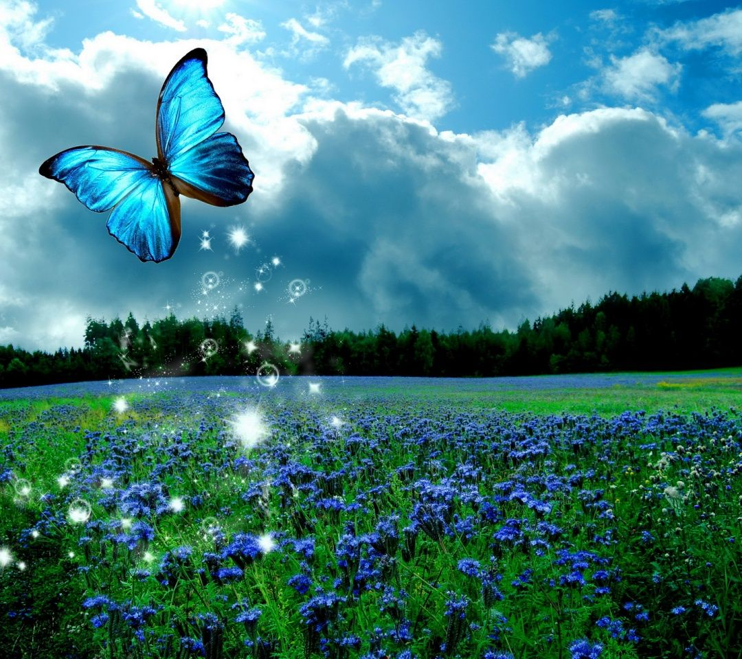 butterfly heaven wallpaper - photo #44