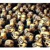 Minions,1080x960,960x1080,free,hot,mobile phone wallpapers,www.wallpaper-mobile.com