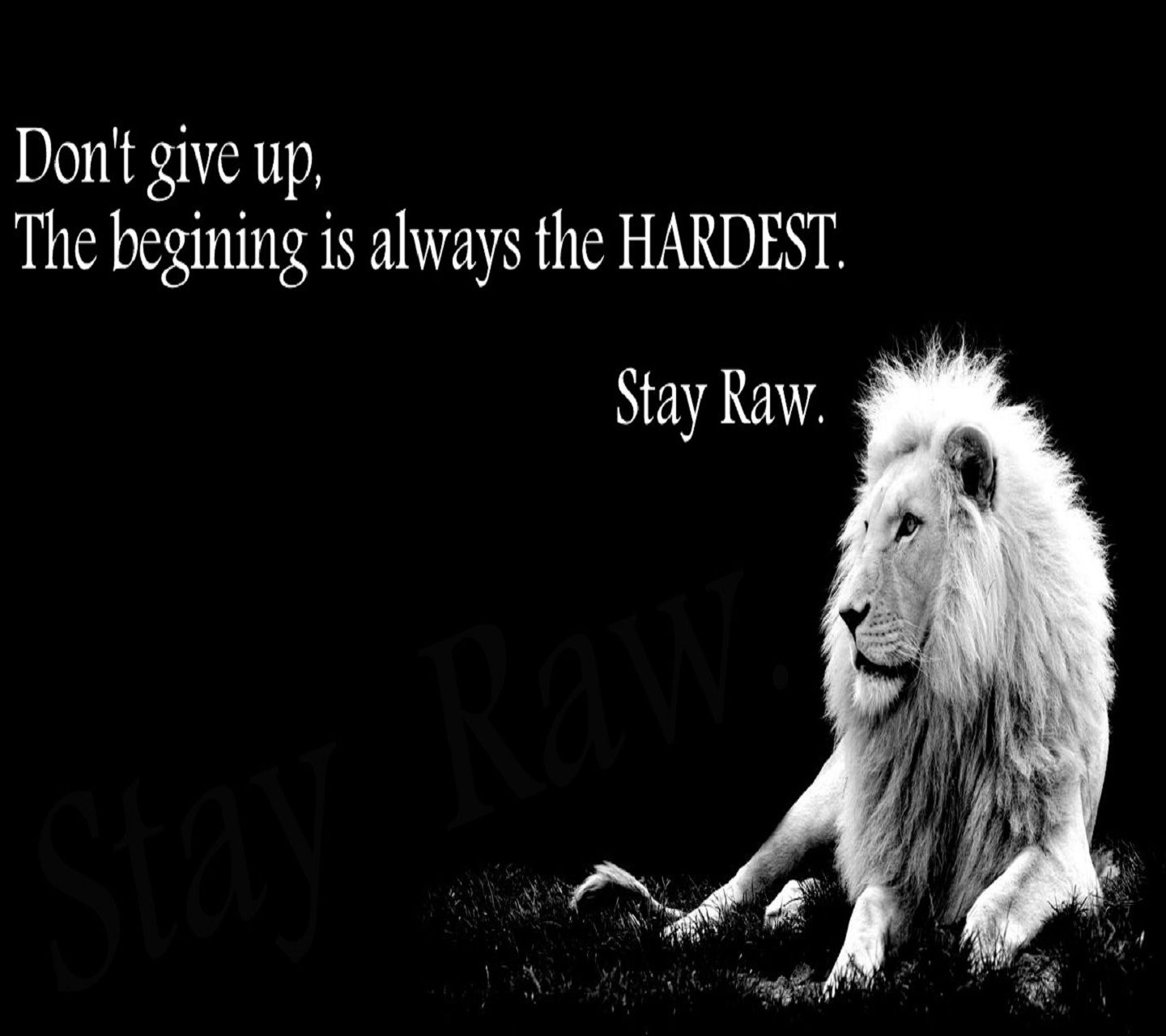 1440x1280 mobile phone wallpapers download 61 - Never give up wallpapers desktop hd ...