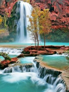 240x320 mobile phone wallpapers download 121 240x320 - Nature wallpaper 240x320 ...