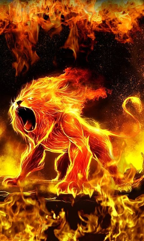 480x800 mobile phone wallpapers download 19 480x800 - Phone wallpapers fire ...
