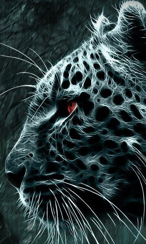 Download Leopard480x800800x480freehotmobile Phone Wallpapers