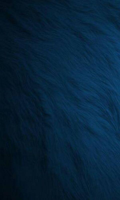 Sizzling Hot Fur Windows Phone