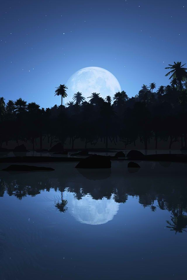 Photo Collection Midnight Moon Wallpaper